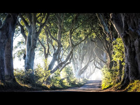 connectYoutube - Ireland - The Road Not Taken