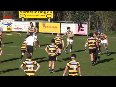 Studio Rugby