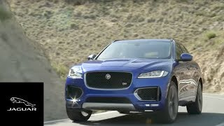 Jaguar F-PACE | Discover the Excitement of Driving Jaguar's SUV