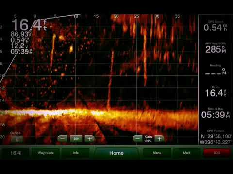 Panoptix LiveScope can help you through the brush