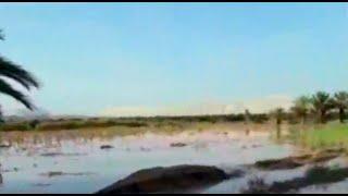 Río Ica se desbordó y afectó más de cien hectáreas de cultivo