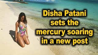 Disha Patani sets the mercury soaring in a new post - BOLLYWOODCOUNTRY