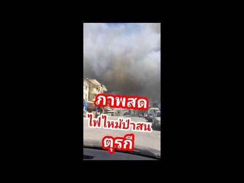 Ep-264-ภาพสด-ไฟไหม้ป่าสนตุรกีใ