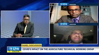 The Effect of COVID-19 on the Tourism Linkages Network | Panel Discussion  | CVMTV