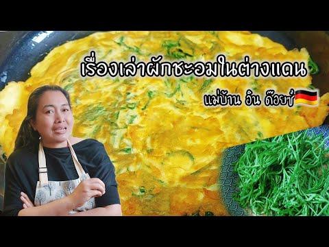 เรื่องเล่าผักชะอมในต่างแดนเมนู