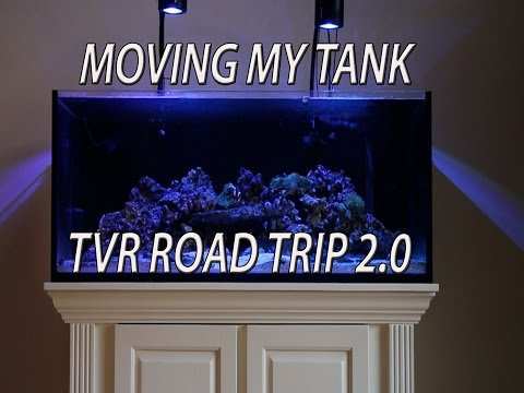 Moving My Tank - TVR Road Trip 2.0