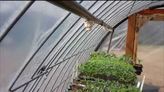 Greenhouse Misting System - YouTube
