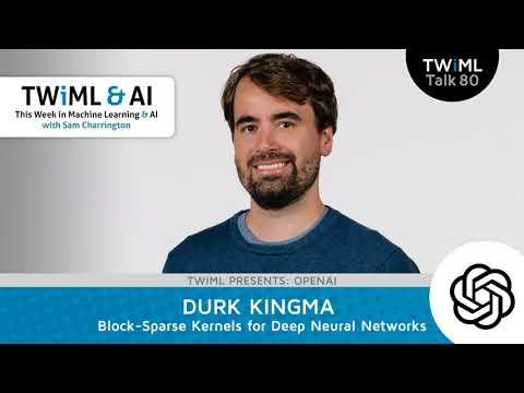 Durk Kingma Interview - Block-Sparse Kernels for Deep Neural Networks