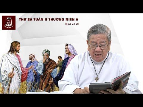 Suy niệm Lời Chúa - Thứ Ba Tuần II Thường Niên A - 21/01/2020 - Lm Giuse Nguyễn Tiến Lộc, C.Ss.R.