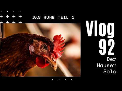 Das Huhn - Eine Fortsetzungsgeschichte. Teil 1 - Daily Vlog 92