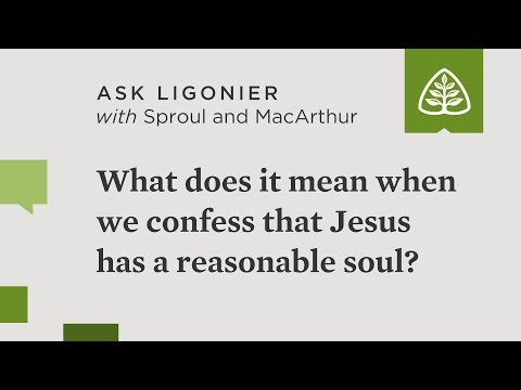 What does it mean when we confess that Jesus has a reasonable soul?