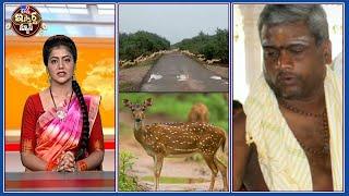 iSmart News : జింకలు బాబోయ్ జింకలు    లేడీస్ చెవిలో పూలు పెట్టిన తెలివైన పూజారి - TV9 - TV9