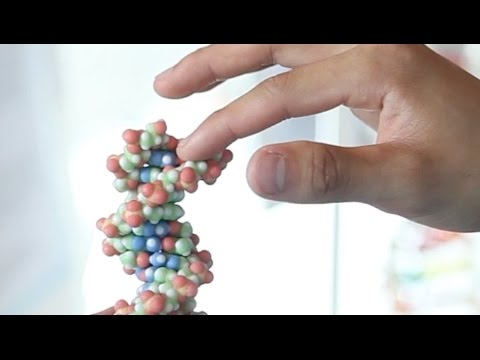 Brandeis Innovations: 3D Printed Molecules