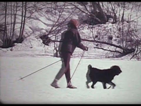 Eidsvoll-filmene: Idyllisk på ski