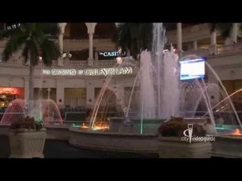 Маями казино mp3 процент выигрыша казино