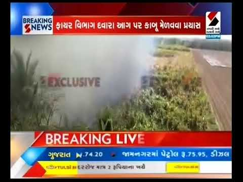 Fire in the sugarcane field in the uplift, difficulty in controlling the fire ॥ Sandesh News