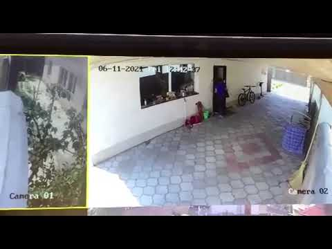 Неизвестная женщина проникла в наш дом. Милиция ничего не предпринимает. Видео