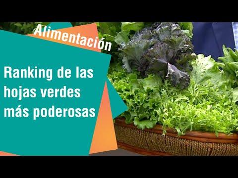 Ranking de las hojas más verdes y poderosas | Alimentación Sana