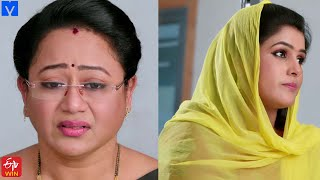 Manasu Mamata Serial Promo - 21st July 2021 - Manasu Mamata Telugu Serial - Mallemalatv - MALLEMALATV
