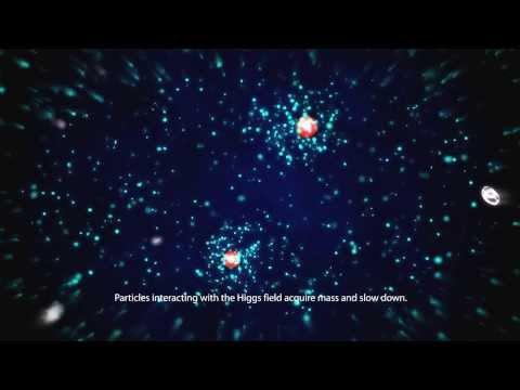 כיצד שדה HIGGS מעניק מסה לחלקיקים אלמנטריים