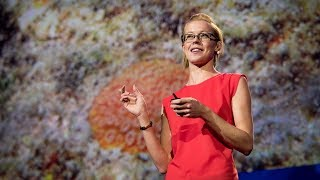 Why I still have hope for coral reefs | Kristen Marhaver