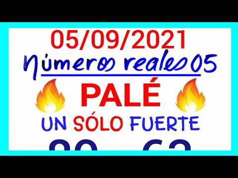 NÚMEROS PARA HOY 05/09/21 DE SEPTIEMBRE PARA TODAS LAS LOTERÍAS...!! Números reales 05 para hoy...!!