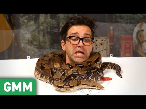 Trapped in a Snake Tank Pt. 2: 6ft Boa Constrictor