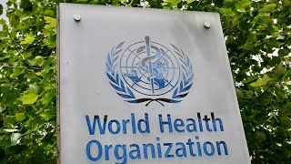 LIVE: World Health Organization holds briefing on the coronavirus pandemic