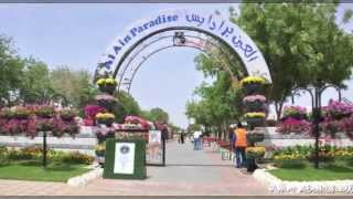 Place to visit in alain r&m