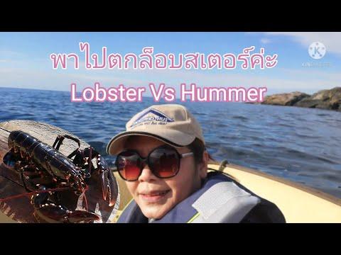 ล็อบสเตอร์#Lobster.-ไปดูการตกล