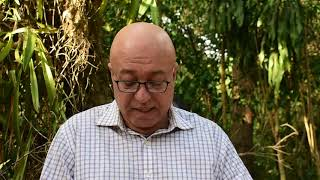 Peledeistas culparan a Danilo y al Penco por la salida del poder
