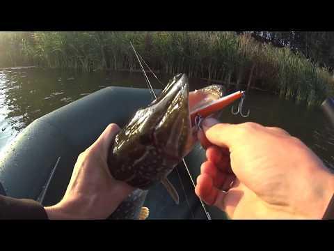 рыбалка на щуку осенью на спиннинг видео на реке