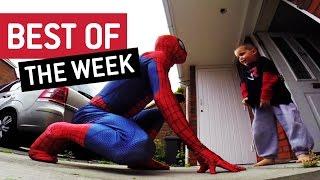 Top 10 Videos of the Week    Saturday, November 22nd 2014