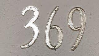 369 DE TESLA GATICO VIP#1 24/07/2020