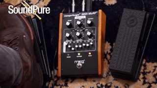 Moog MF-105M MIDI MuRF Pedal Demo