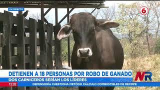 OIJ captura a 18 personas por robo de ganado