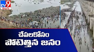 సుందిళ్ల బ్యారేజీలో చేపల వేట - TV9 - TV9