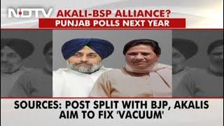 Akali Dal, Mayawati's Party Form Alliance Ahead Of Punjab Polls: Sources - NDTV