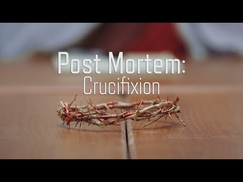 Post Mortem: The Crucifixion of Christ