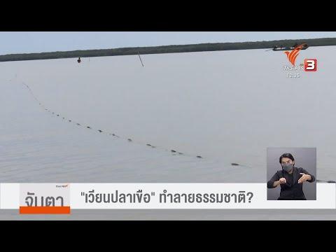 เวียนปลาเขือ-ทำลายธรรมชาติ-หรื