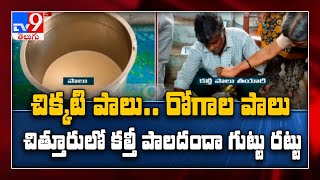 Man held for adulteration of milk in Chittoor - TV9 - TV9