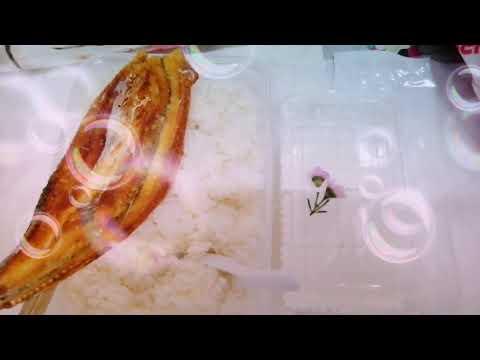ข้าวสวยผสมน้ำร้อนแบ่งปัน