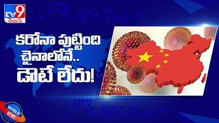 Corona Virus: కరోనా వైరస్ పుట్టింది ముమ్మాటికి చైనాలోనే! - TV9 - TV9