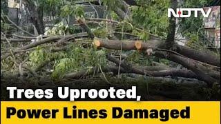 Kolkata's Famous Park Street Devastated By Cyclone Amphan - NDTV