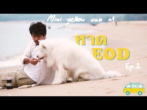 พาหมามาแค้มป์ปิ้ง---หาด-EOD-สั