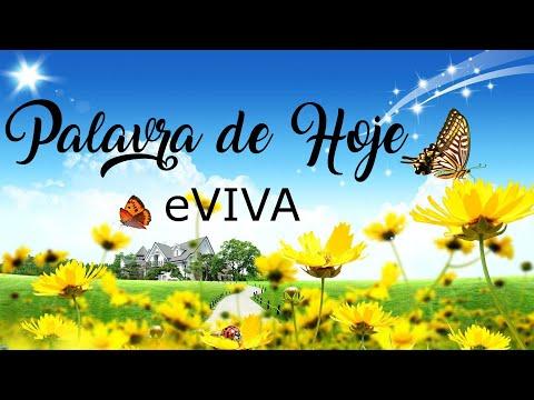 PALAVRA DE HOJE 08 DE FEVEREIRO eVIVA MENSAGEM MOTIVACIONAL PARA REFLEXÃO DE VIDA - BOM DIA!