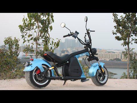 Citycoco Electric Scooter City coco Chopper Rooder Runner Review European Warehouse Escooter Price