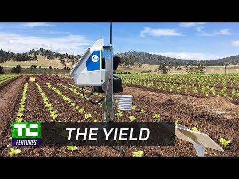 The Yield gives farmers useful data about what's happening on their farms