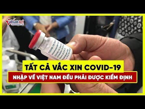 Tất cả vắc xin Covid 19 nhập về Việt Nam đều phải được kiểm định