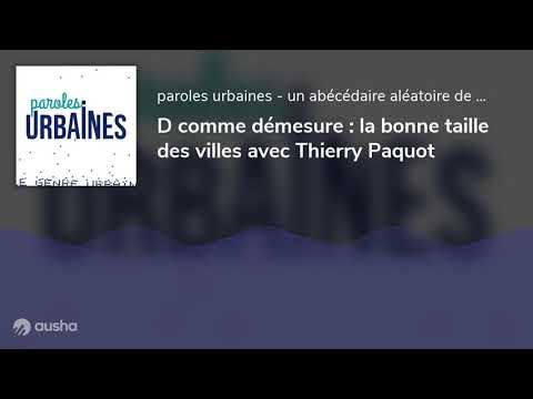 Vidéo de Thierry Paquot